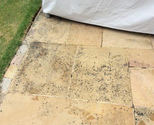 Lichen mark removal before