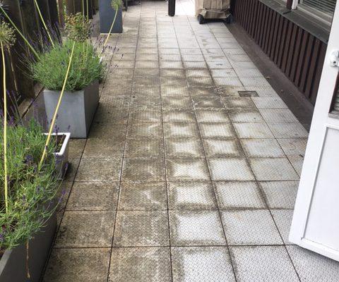 lichen-mark-removal