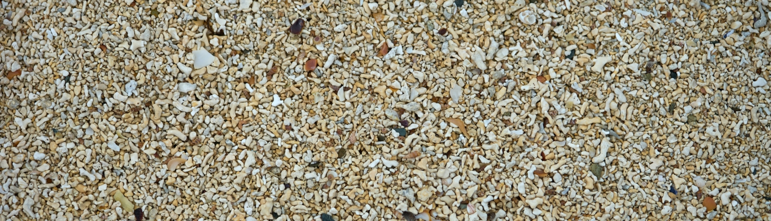 resin-gravel-driveway-cleaning